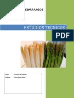Estudios Tecnicos Esparragos 2017 Completar