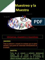12 MUESTRA