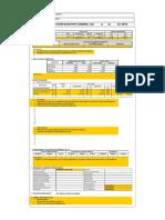 Formato Resumen Ejecutivo Instruc01