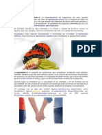APAREAMIENTO.docx