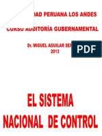 AUDITORIA GUBERNAMENTAL.pdf