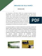 HUMEDALES DE VILLA MARÍA, INFORME.docx