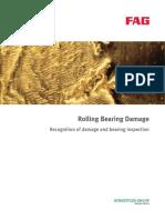 FAG Bearing failure Recognition 2.pdf
