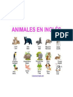 The Animals of the Fram