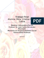 Trabajo Final IT Maestria Issuu