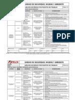 Análisis de Riesgos Operadores de Lineas de Produccion - Copia