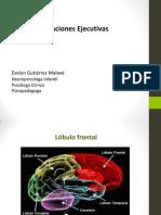 Procesos Cognitivos Funciones Ejecutivas