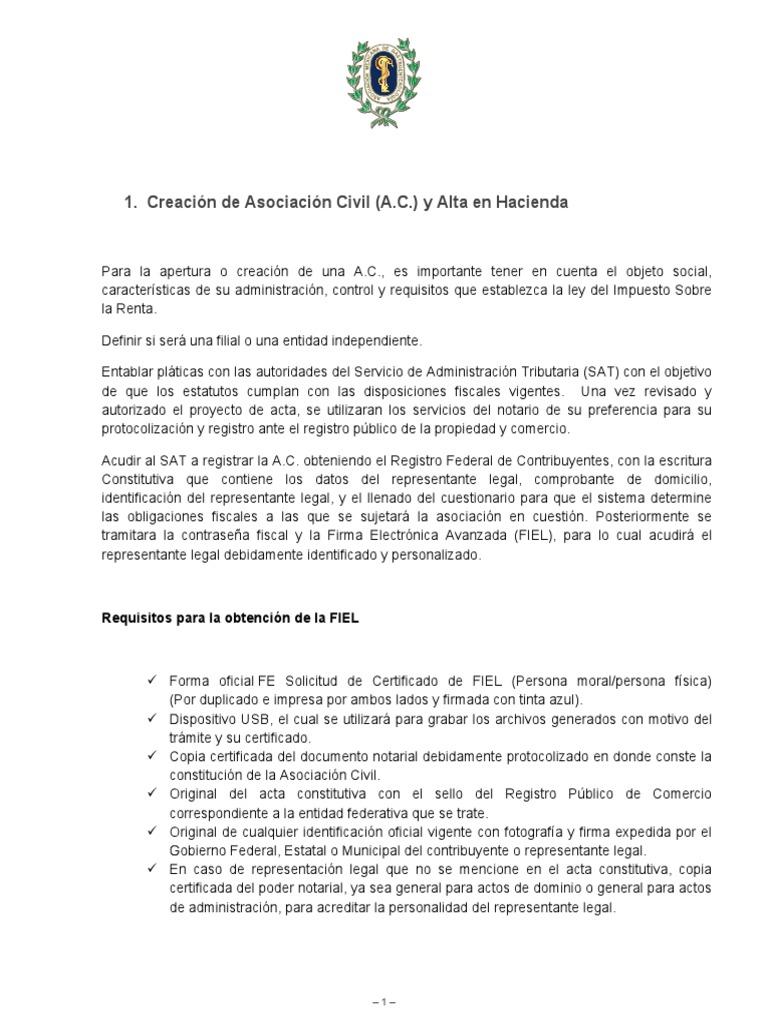 Manual de Procedimientos Sociedades FIliales PDF AMG