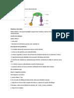 Ejemplo-15-traducido.docx