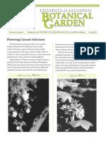 Spring 1999 Botanical Garden University of California Berkeley Newsletter