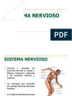 Sistema_nervioso 7.ppt