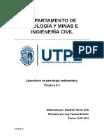 IDENTIFICACIÓN-DE-ROCAS-SEDIMENTARIAS.docx