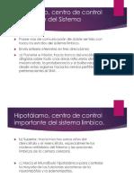 Presentacion Del Hipotalamo Tema 4