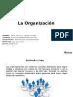La Organizacion.pptx