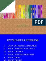 184126966-1-EXTR-INFERIOR-2009-ppt.ppt