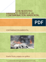 Contaminacion y Sus Efectos
