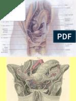 irrigacion uterina