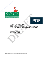 Draft_Beef_Code_Dec_2012.pdf