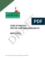 Draft_Beef_Code_Dec_2012.pdf