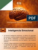 Inteligencia emocional  Viblica