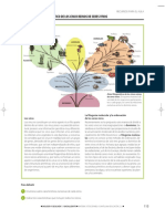 Los cinco reinos.pdf