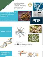 ASPECTOS GENERALES DE LA GENÉTICA MICROBIANA - 3.pdf