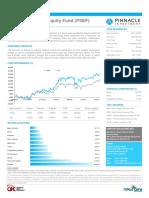 Pinnacle Strategic Equity Fund Factsheet[1]_CONTOH