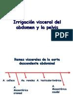 Irrigación Visceral Del Abdomen y La Pelvis