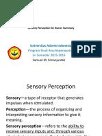 15 Sensory Perception Summary
