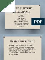Virus Enterik