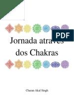 Jornada Através Dos Chakras - Muladhara