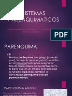 SISTEMAS PARENQUIMATICOS1