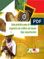 Cultivo Orgánico Del Ñame