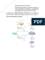 bioquimica galactosemia