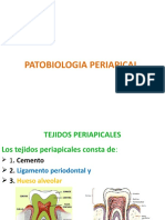 PATOBIOLOGIA PERIAPICAL