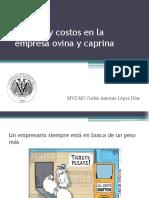 Administracion de Costos en La Empresa Ovina y Caprina
