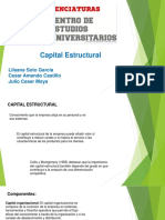Capital Estructural