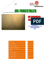 (importante)Sr. Herbert H_Mirada medioambiental del daño de los IF-min.pdf