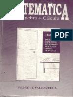 LIB_MAT ÁLGEBRA + CÁLCULO PEDRO VALENZUELA