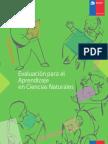EVALUACIONPARAAPRENDIZAJE (1).pdf