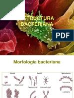 microhidrobilogia 1