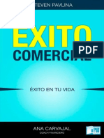Steve Pavlina - Exito Comercial Exito en Tu Vi