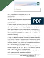 Anexo - Sentencia Horas Extra.pdf