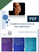 CAMBIOS FISIOLOGICOAEN EL EMBARAZO.pdf