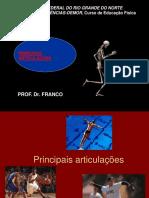 PRINCIPAIS_ARTICULAOES