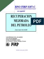 FIRP- recuperacion mejorada petroleo.pdf