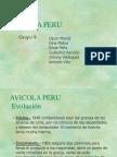 Caso - Avicola Perú
