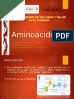 EXPO 5 Aminoácidos
