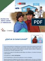 Rotafolio Aymara de Tuberculosis