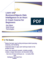 BI2013 Mayer Learnsapbusinessobjects